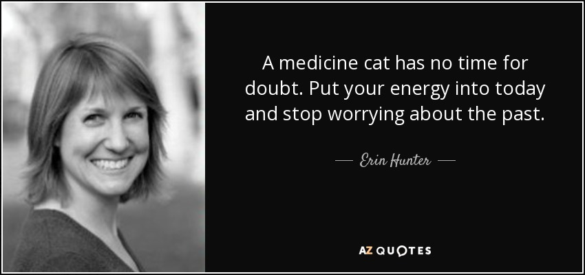 A medicine cat has no time for doubt. Put your energy into today and stop worrying about the past. - Erin Hunter
