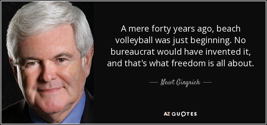 A mere forty years ago, beach volleyball was just beginning. No bureaucrat would have invented it, and that's what freedom is all about. - Newt Gingrich