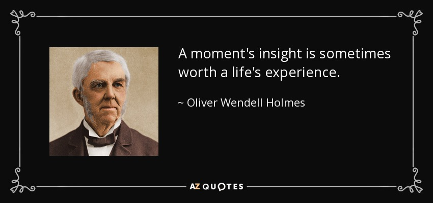 A moment's insight is sometimes worth a life's experience. - Oliver Wendell Holmes Sr.