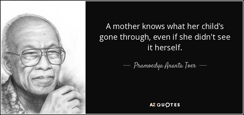 A mother knows what her child's gone through, even if she didn't see it herself. - Pramoedya Ananta Toer