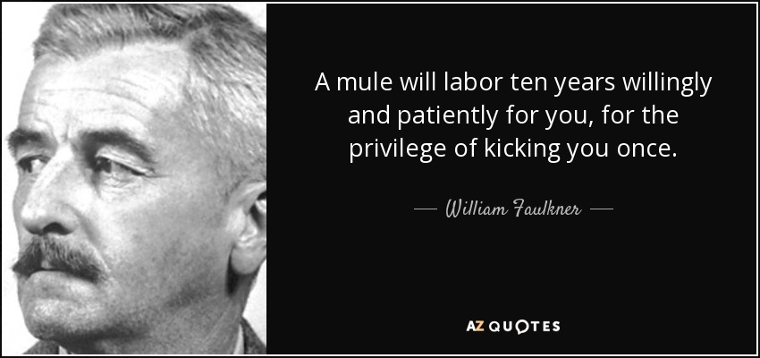 A mule will labor ten years willingly and patiently for you, for the privilege of kicking you once. - William Faulkner