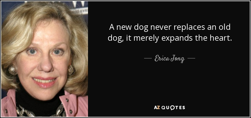 A new dog never replaces an old dog, it merely expands the heart. - Erica Jong