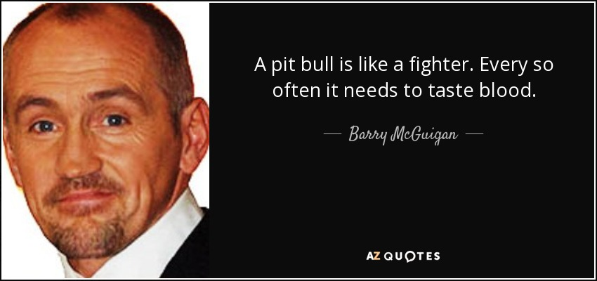 A pit bull is like a fighter. Every so often it needs to taste blood. - Barry McGuigan