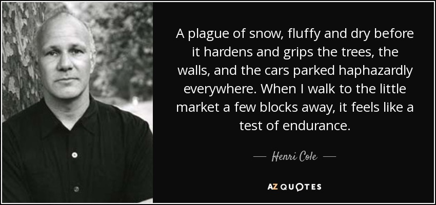 A plague of snow, fluffy and dry before it hardens and grips the trees, the walls, and the cars parked haphazardly everywhere. When I walk to the little market a few blocks away, it feels like a test of endurance. - Henri Cole