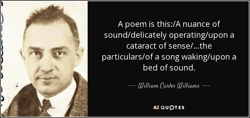 A poem is this:/A nuance of sound/delicately operating/upon a cataract of sense/...the particulars/of a song waking/upon a bed of sound. - William Carlos Williams