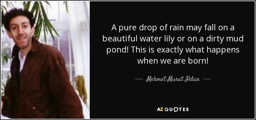 A pure drop of rain may fall on a beautiful water lily or on a dirty mud pond! This is exactly what happens when we are born! - Mehmet Murat Ildan