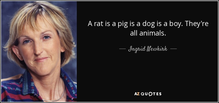 A rat is a pig is a dog is a boy. They're all animals. - Ingrid Newkirk