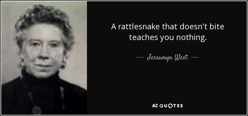 A rattlesnake that doesn't bite teaches you nothing. - Jessamyn West