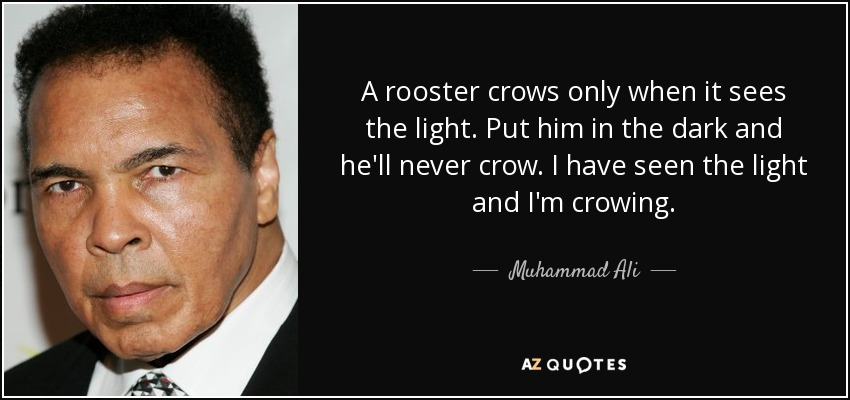A rooster crows only when it sees the light. Put him in the dark and he'll never crow. I have seen the light and I'm crowing. - Muhammad Ali