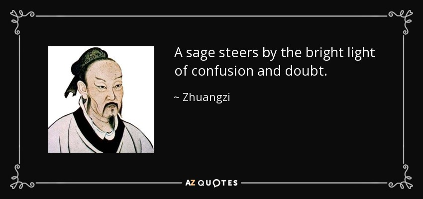 A sage steers by the bright light of confusion and doubt. - Zhuangzi