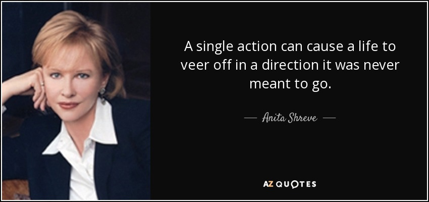A single action can cause a life to veer off in a direction it was never meant to go. - Anita Shreve