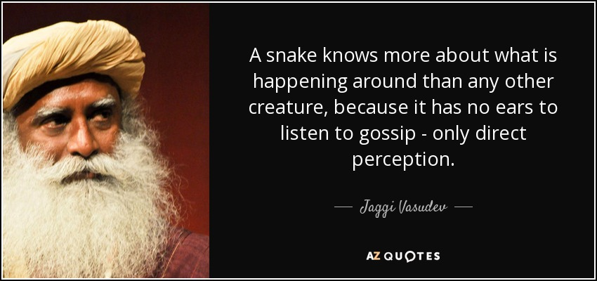 A snake knows more about what is happening around than any other creature, because it has no ears to listen to gossip - only direct perception. - Jaggi Vasudev