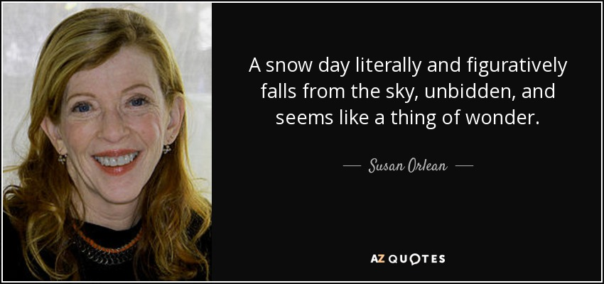 A snow day literally and figuratively falls from the sky, unbidden, and seems like a thing of wonder. - Susan Orlean