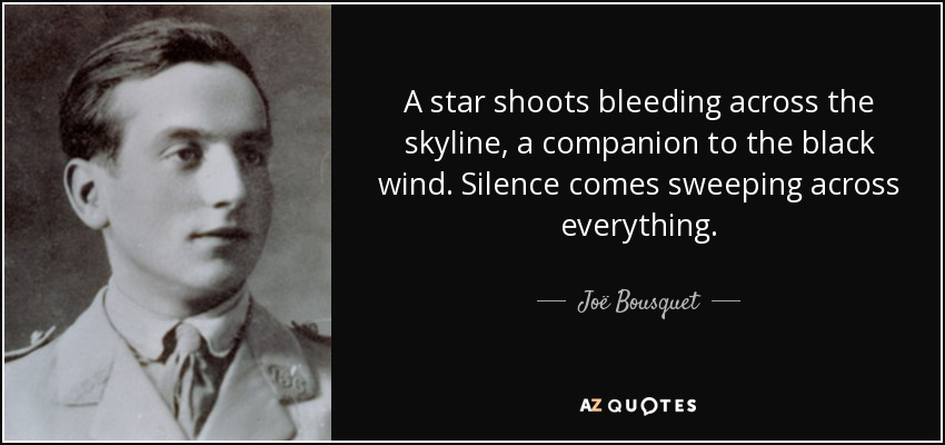 A star shoots bleeding across the skyline, a companion to the black wind. Silence comes sweeping across everything. - Joë Bousquet