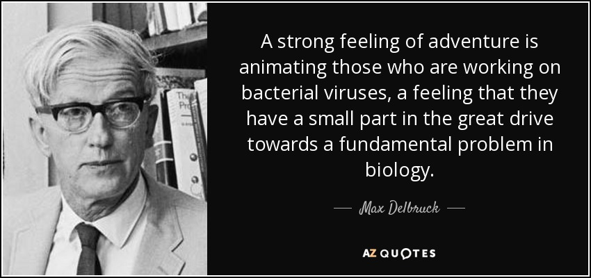 A strong feeling of adventure is animating those who are working on bacterial viruses, a feeling that they have a small part in the great drive towards a fundamental problem in biology. - Max Delbruck