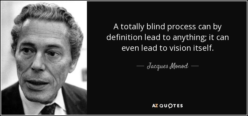 A totally blind process can by definition lead to anything; it can even lead to vision itself. - Jacques Monod