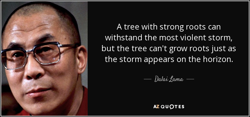 A tree with strong roots can withstand the most violent storm, but the tree can't grow roots just as the storm appears on the horizon. - Dalai Lama