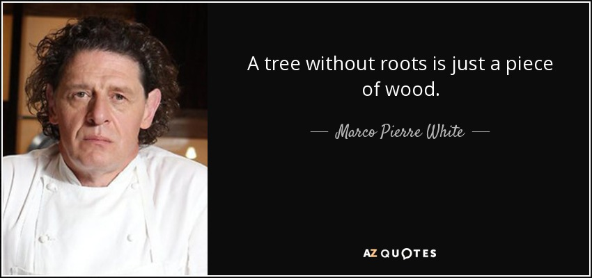 A tree without roots is just a piece of wood. - Marco Pierre White