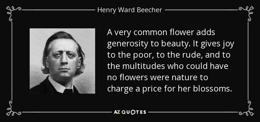 A very common flower adds generosity to beauty. It gives joy to the poor, to the rude, and to the multitudes who could have no flowers were nature to charge a price for her blossoms. - Henry Ward Beecher