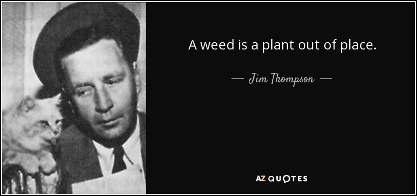 A weed is a plant out of place. - Jim Thompson