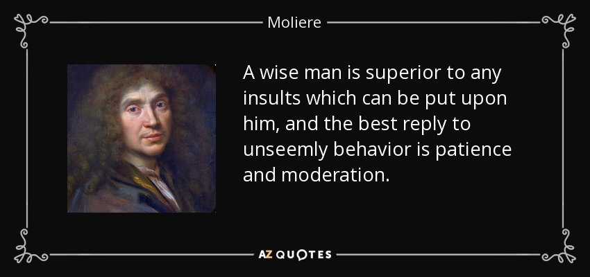 A wise man is superior to any insults which can be put upon him, and the best reply to unseemly behavior is patience and moderation. - Moliere
