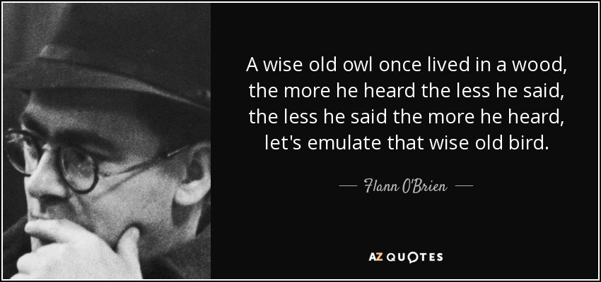 A wise old owl once lived in a wood, the more he heard the less he said, the less he said the more he heard, let's emulate that wise old bird. - Flann O'Brien
