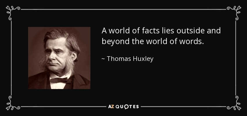 A world of facts lies outside and beyond the world of words. - Thomas Huxley
