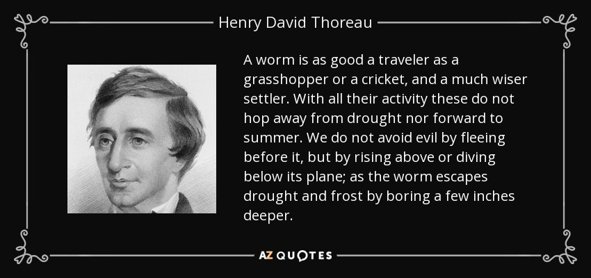 A worm is as good a traveler as a grasshopper or a cricket, and a much wiser settler. With all their activity these do not hop away from drought nor forward to summer. We do not avoid evil by fleeing before it, but by rising above or diving below its plane; as the worm escapes drought and frost by boring a few inches deeper. - Henry David Thoreau