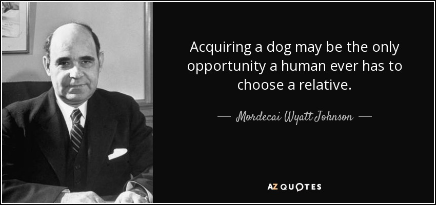 Acquiring a dog may be the only opportunity a human ever has to choose a relative. - Mordecai Wyatt Johnson