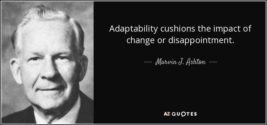Adaptability cushions the impact of change or disappointment. - Marvin J. Ashton