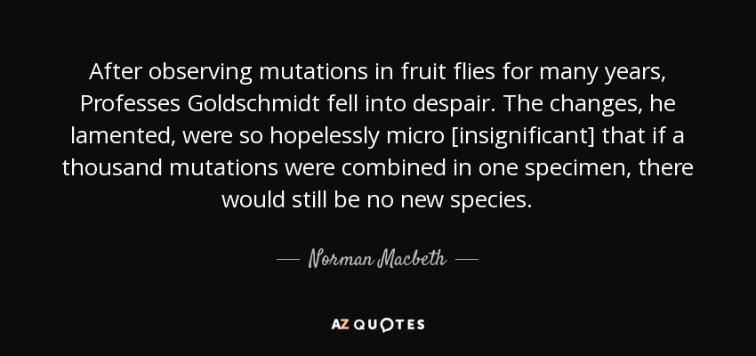 After observing mutations in fruit flies for many years, Professes Goldschmidt fell into despair. The changes, he lamented, were so hopelessly micro [insignificant] that if a thousand mutations were combined in one specimen, there would still be no new species. - Norman Macbeth