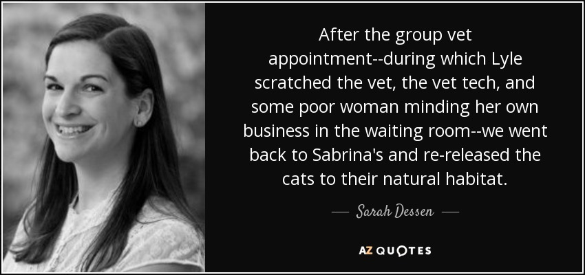 After the group vet appointment--during which Lyle scratched the vet, the vet tech, and some poor woman minding her own business in the waiting room--we went back to Sabrina's and re-released the cats to their natural habitat. - Sarah Dessen