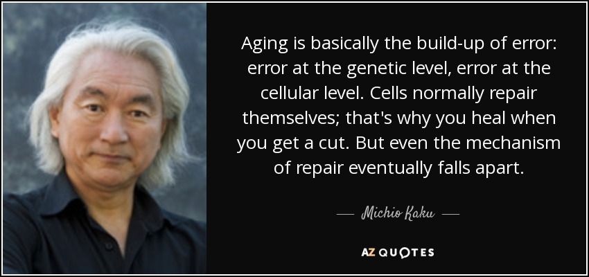 Aging is basically the build-up of error: error at the genetic level, error at the cellular level. Cells normally repair themselves; that's why you heal when you get a cut. But even the mechanism of repair eventually falls apart. - Michio Kaku