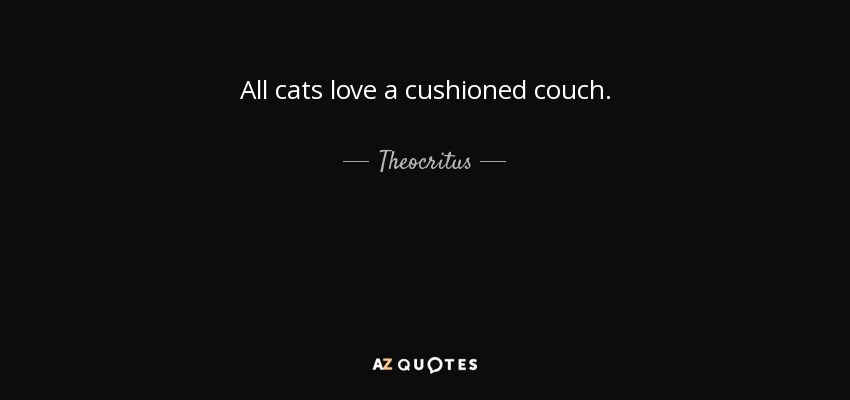 All cats love a cushioned couch. - Theocritus
