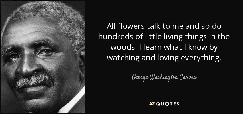 All flowers talk to me and so do hundreds of little living things in the woods. I learn what I know by watching and loving everything. - George Washington Carver