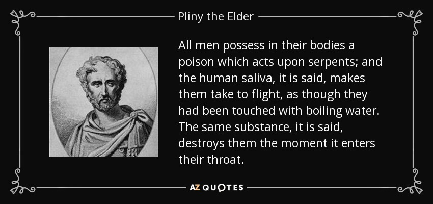 All men possess in their bodies a poison which acts upon serpents; and the human saliva, it is said, makes them take to flight, as though they had been touched with boiling water. The same substance, it is said, destroys them the moment it enters their throat. - Pliny the Elder
