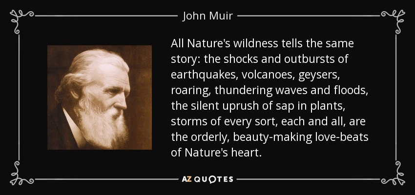 All Nature's wildness tells the same story: the shocks and outbursts of earthquakes, volcanoes, geysers, roaring, thundering waves and floods, the silent uprush of sap in plants, storms of every sort, each and all, are the orderly, beauty-making love-beats of Nature's heart. - John Muir