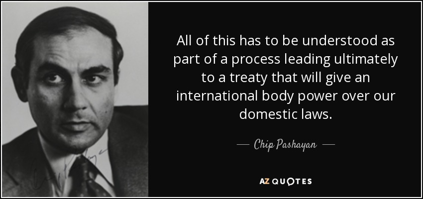 All of this has to be understood as part of a process leading ultimately to a treaty that will give an international body power over our domestic laws. - Chip Pashayan