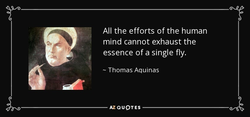 All the efforts of the human mind cannot exhaust the essence of a single fly. - Thomas Aquinas