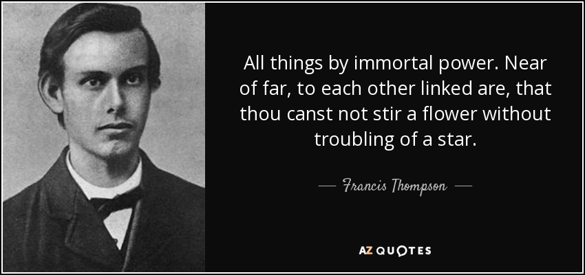 All things by immortal power. Near of far, to each other linked are, that thou canst not stir a flower without troubling of a star. - Francis Thompson