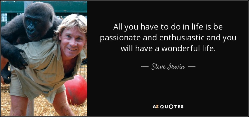 All you have to do in life is be passionate and enthusiastic and you will have a wonderful life. - Steve Irwin