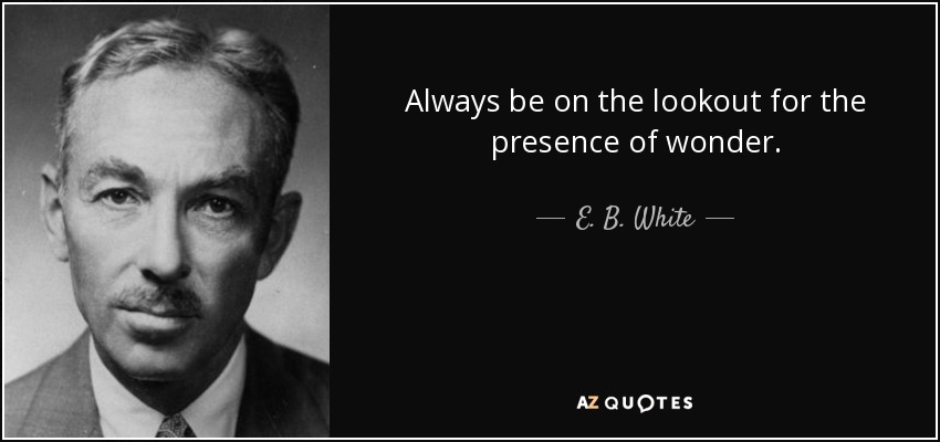 Always be on the lookout for the presence of wonder. - E. B. White