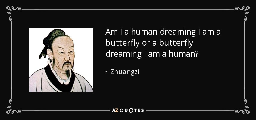 Am I a human dreaming I am a butterfly or a butterfly dreaming I am a human? - Zhuangzi