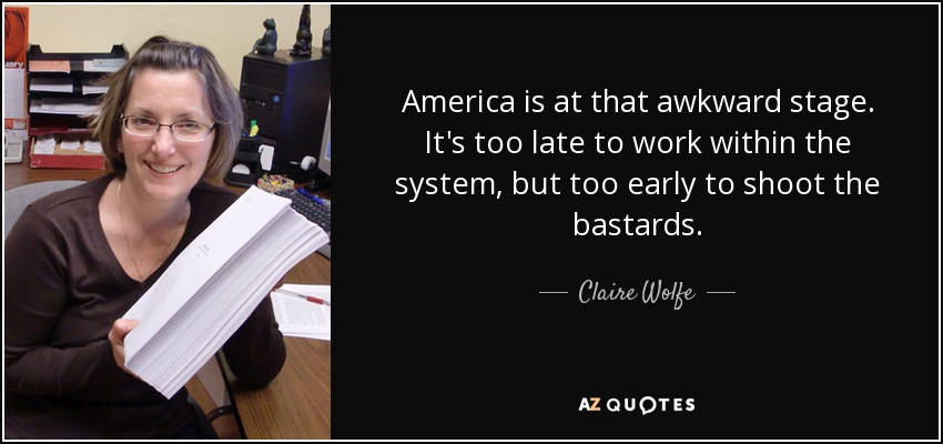 America is at that awkward stage. It's too late to work within the system, but too early to shoot the bastards. - Claire Wolfe