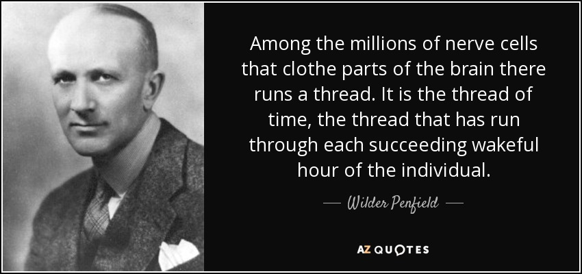 Among the millions of nerve cells that clothe parts of the brain there runs a thread. It is the thread of time, the thread that has run through each succeeding wakeful hour of the individual. - Wilder Penfield