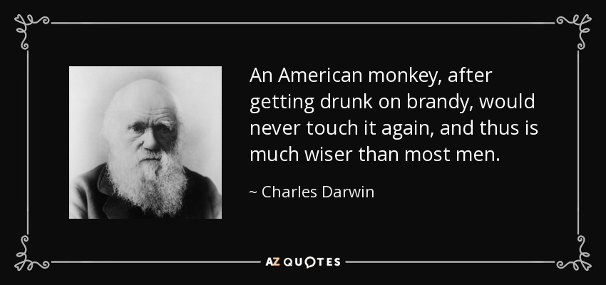 An American monkey, after getting drunk on brandy, would never touch it again, and thus is much wiser than most men. - Charles Darwin