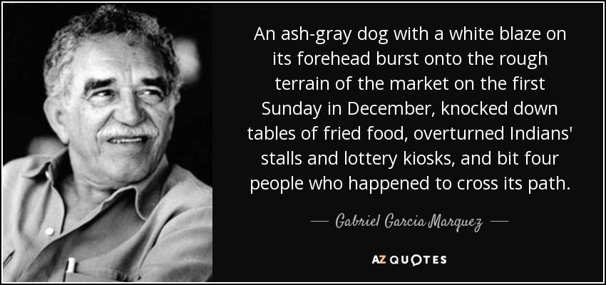 An ash-gray dog with a white blaze on its forehead burst onto the rough terrain of the market on the first Sunday in December, knocked down tables of fried food, overturned Indians' stalls and lottery kiosks, and bit four people who happened to cross its path. - Gabriel Garcia Marquez