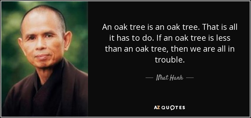 An oak tree is an oak tree. That is all it has to do. If an oak tree is less than an oak tree, then we are all in trouble. - Nhat Hanh