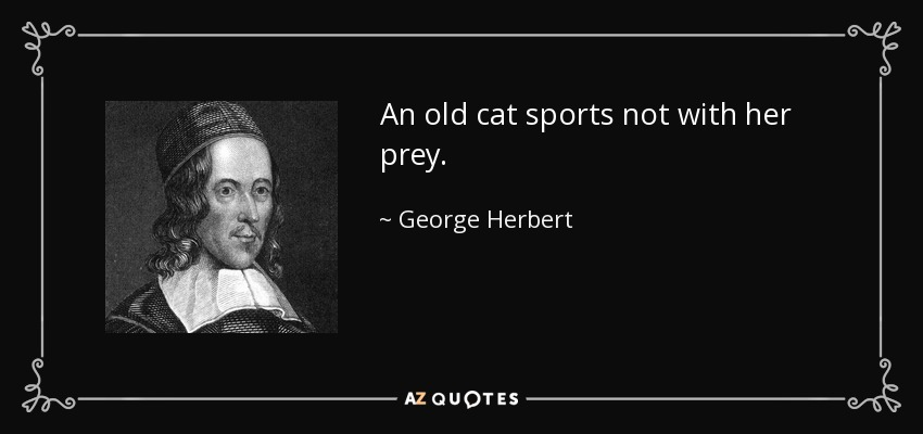 An old cat sports not with her prey. - George Herbert