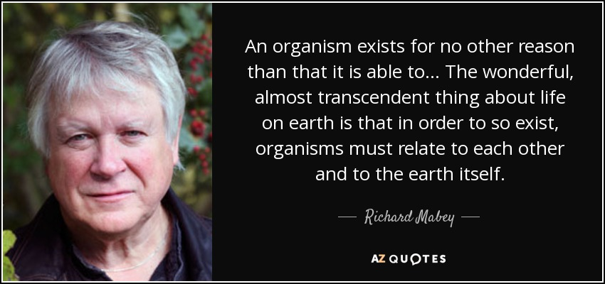 An organism exists for no other reason than that it is able to... The wonderful, almost transcendent thing about life on earth is that in order to so exist, organisms must relate to each other and to the earth itself. - Richard Mabey